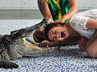 Экскурсия на шоу крокодилов и змей