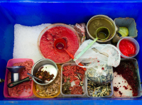 Блюда тайской кухни с сырым мясом и кровью