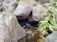 Cекретный водопад