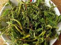 Съедобные тайские цветы фото:http://www.tasteofthai.ru/thai-edible-herbs/